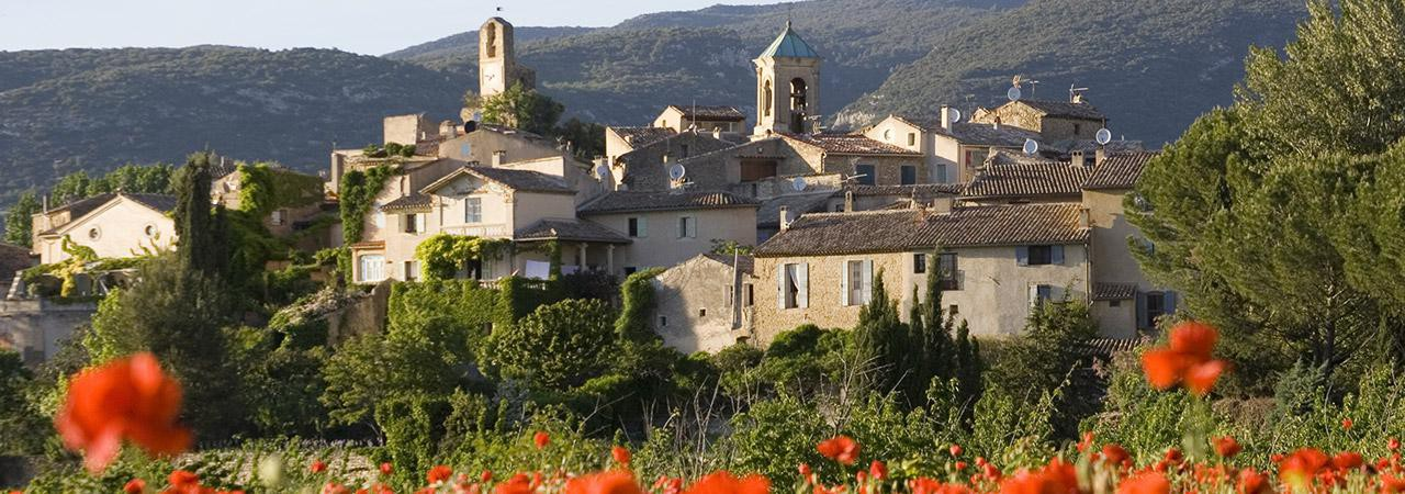 Experience the Luberon, wines & light lands